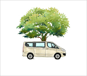 Tuscan Organic Tours - Private Wine Tours in Tuscany
