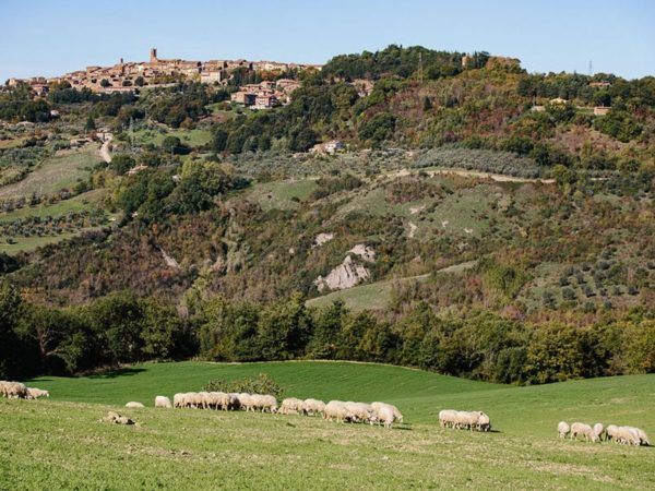 Hidden Tuscany Slow Food tours Tuscany